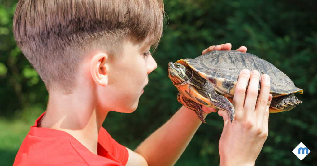 kid holding a turtle